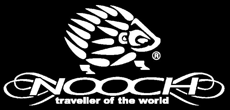 logo nooch blanc transparent